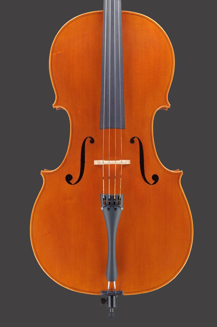 Violoncello Zelina Mod. Stradivari
